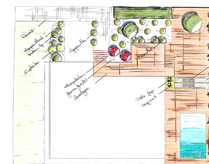 Croquis Création de jardin
